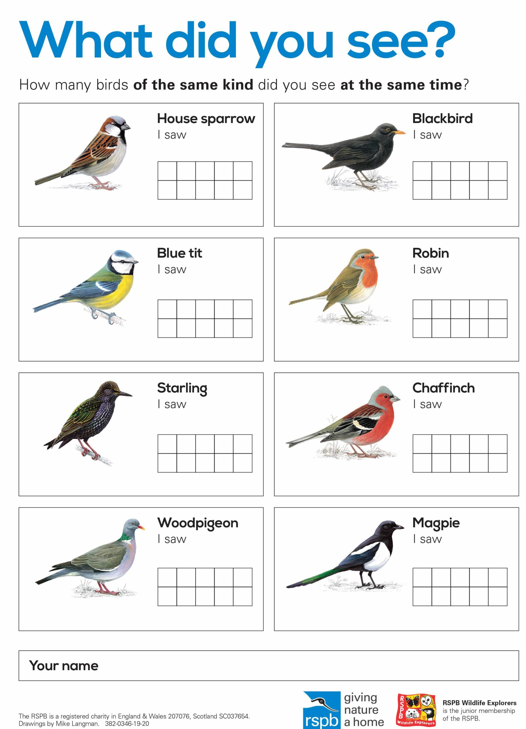 Birdwatching Sheet with Tens Frame
